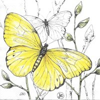 yellow-butterflies